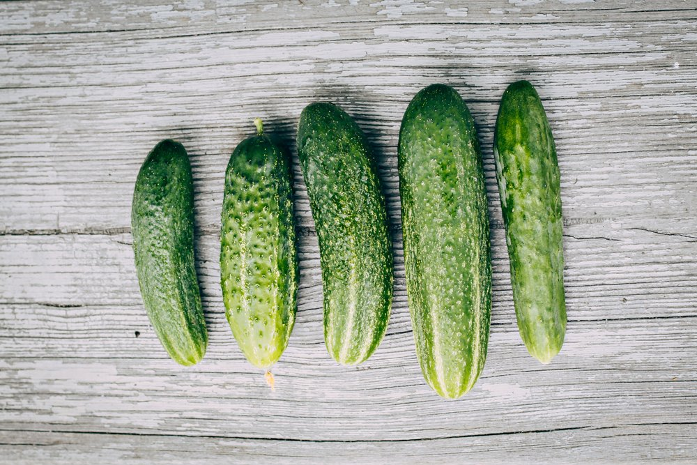 6 pick a bushel cucumbers laying on a gray table