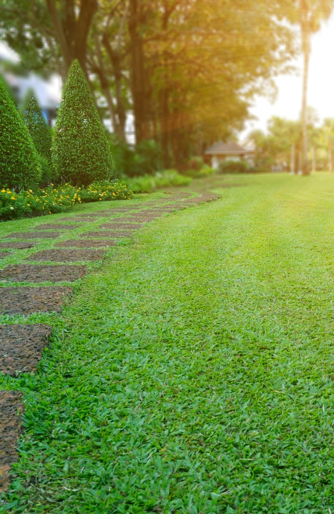 properties at home can benefit from lawn sand