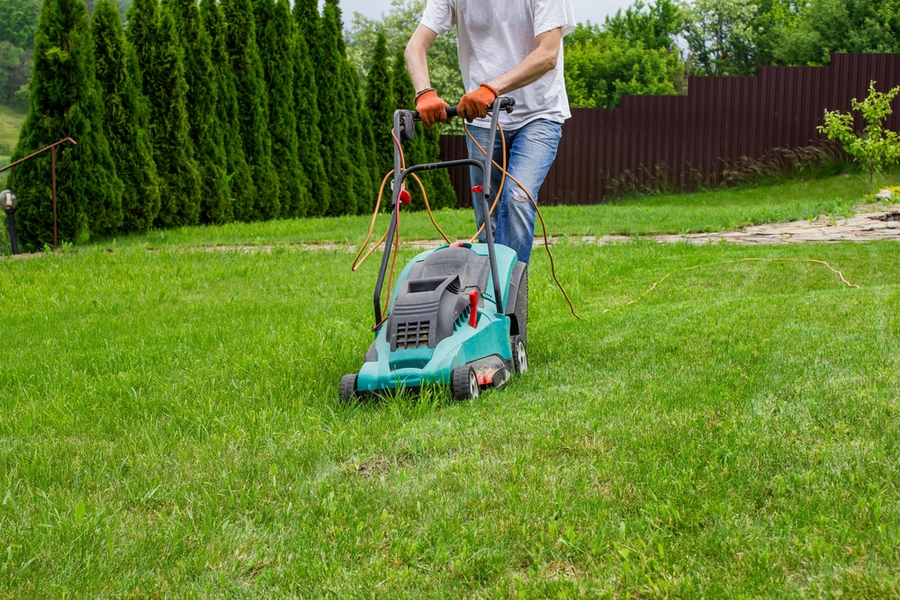 A man is maintaining his lawn with a push style machine that is corded