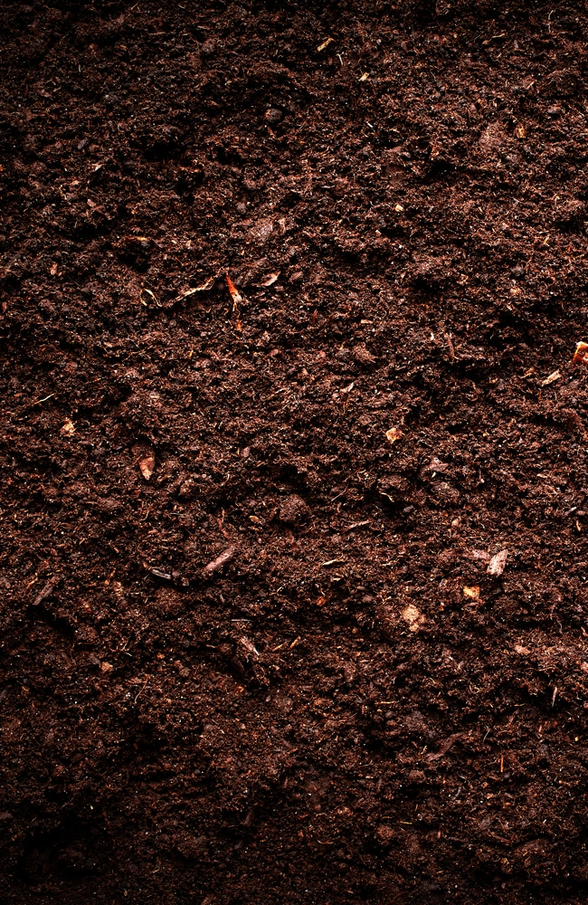 Determine whether your soil absorbs or not to help with time length