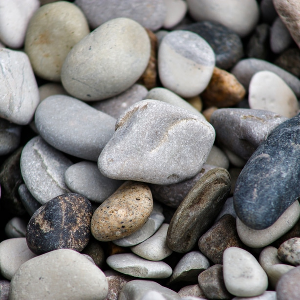 River rocks add a beautiful touch when used as rock mulch.