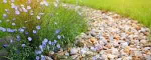 Rock mulch can add a wonderful aesthetic to a garden