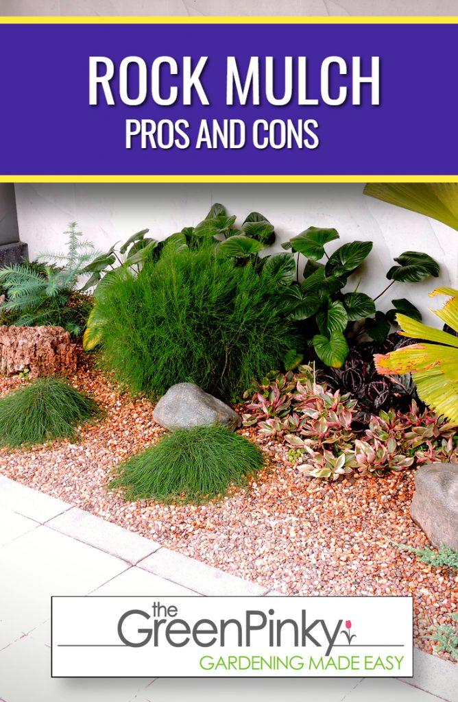 Garden using rock mulch instead of organic mulch with proper instructions