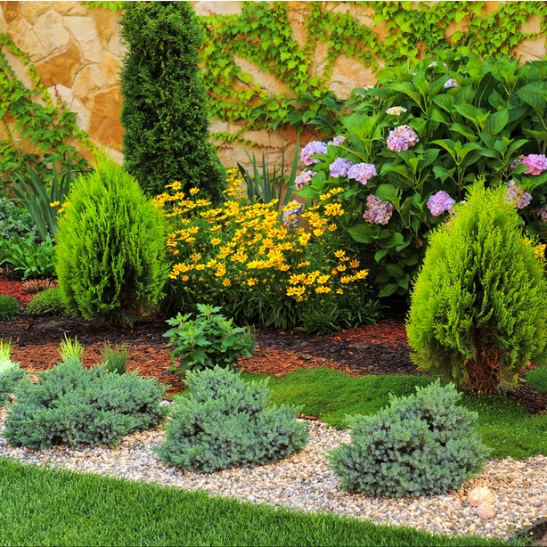 Garden planted with both organic and rock mulch