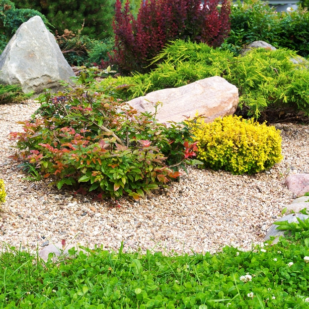 Rock has many advantages and disadvantages to organic mulch