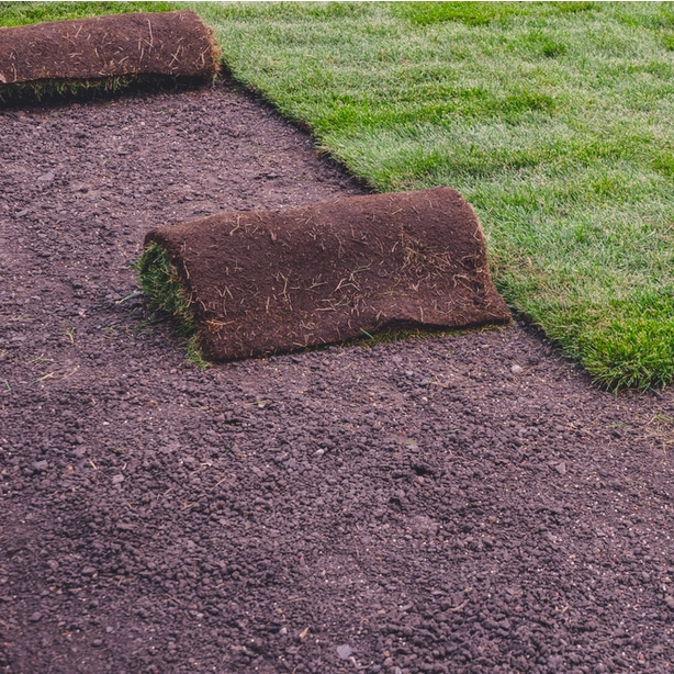 Sod rolled up in one of the many forms sod is available in.