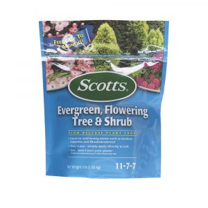Evergreen boxwood need food to help grow optimally