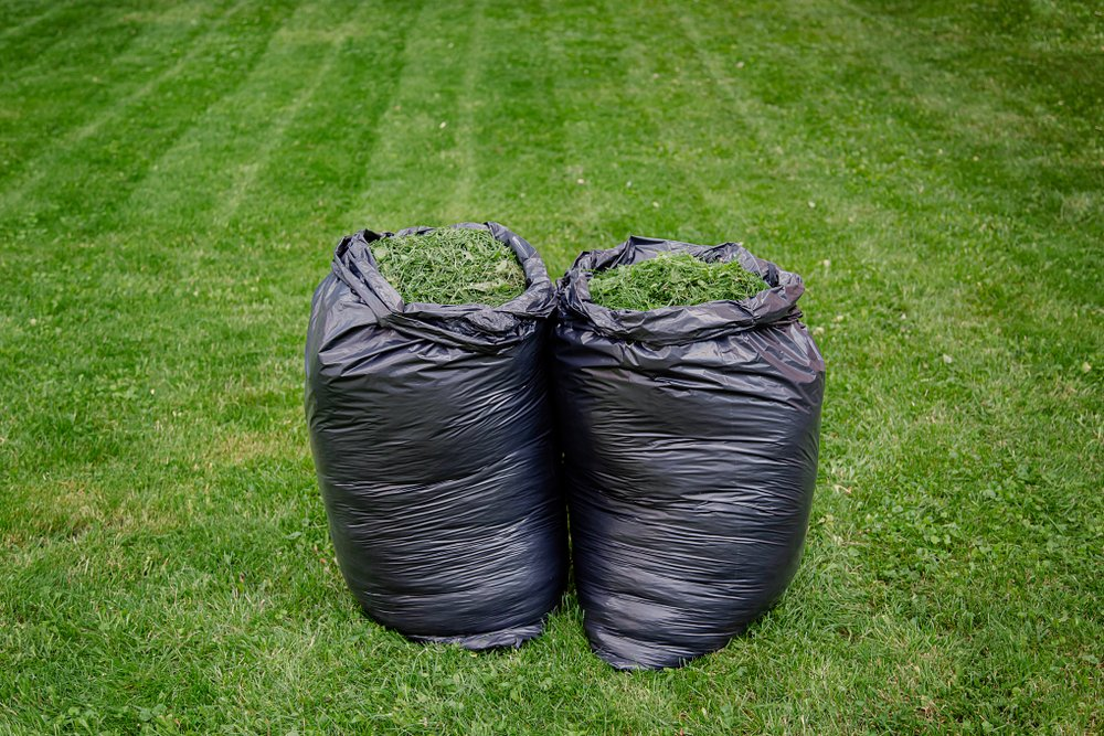 Mulching vs Bagging - Which Is Better?