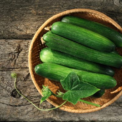 Cucumber Growing Stages