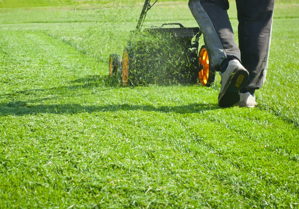 A man using a push style lawnmower to mow the lawn and leaving the clippings on the ground.