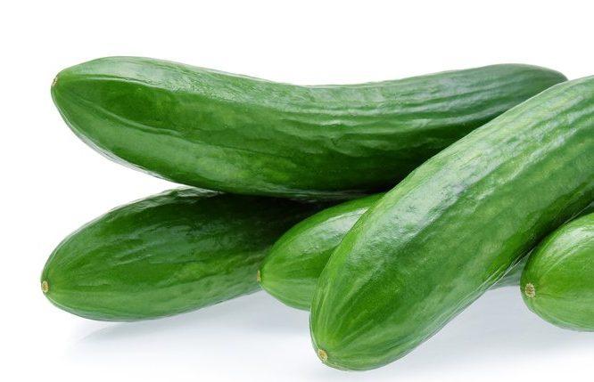 Space master cucumbers