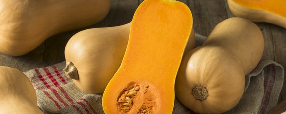Growing plump squash is not difficult with the proper growing technique
