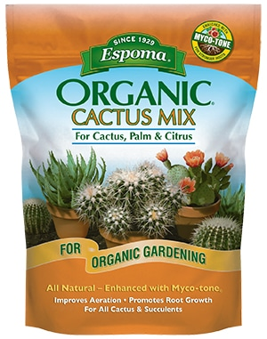 The best soil for string of dolphins is a cactus mix