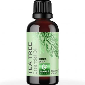 Tea tree oil can scare away ants