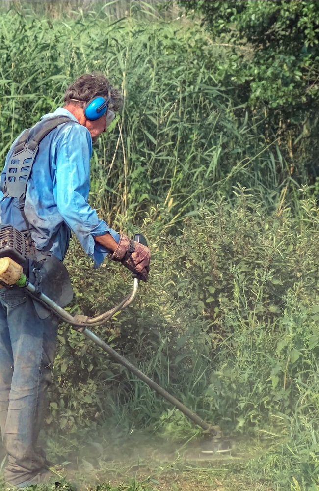 Trimmer easily gets rid of underbrush