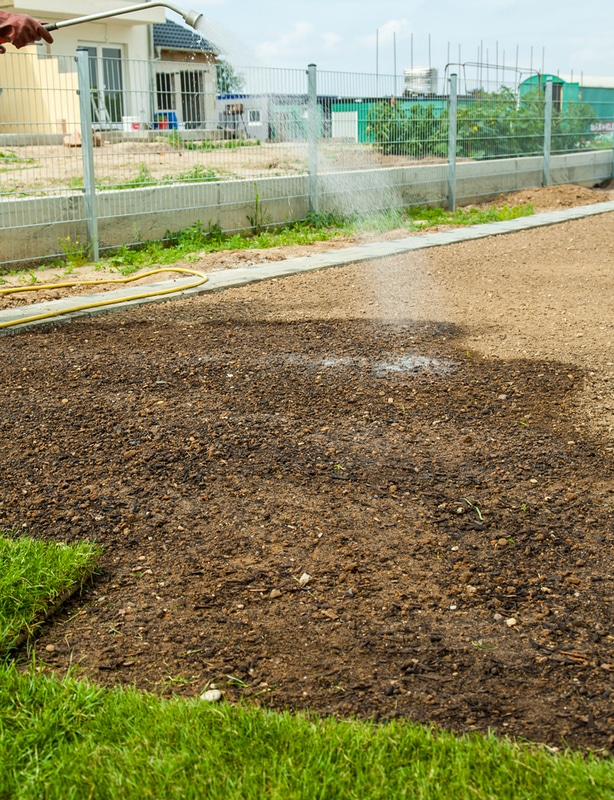 Water the ground before laying sod to help roots establish