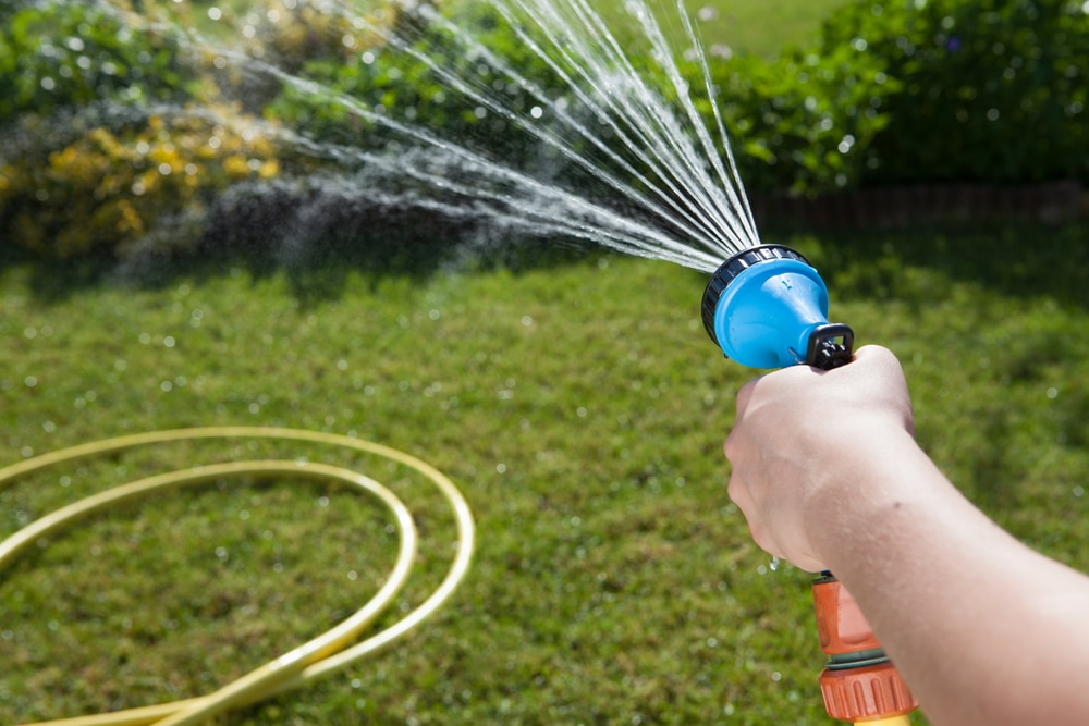 Watering grass with a hose