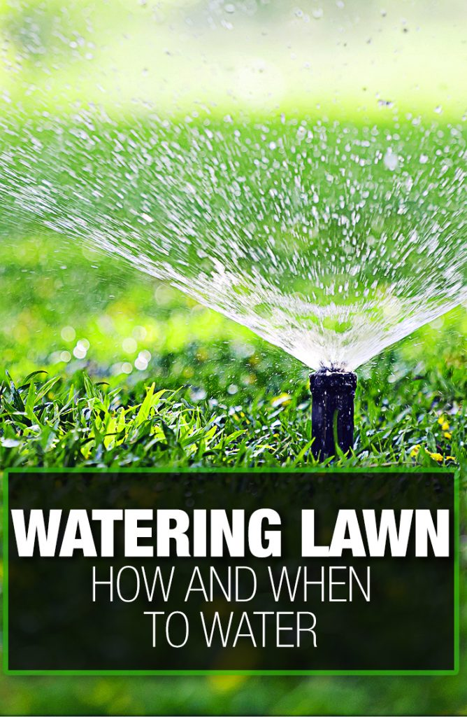 Amount of water to spray on your grass is covered in the guide