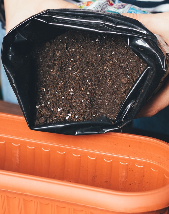 Well-draining soil in a bag being poured into an orange container
