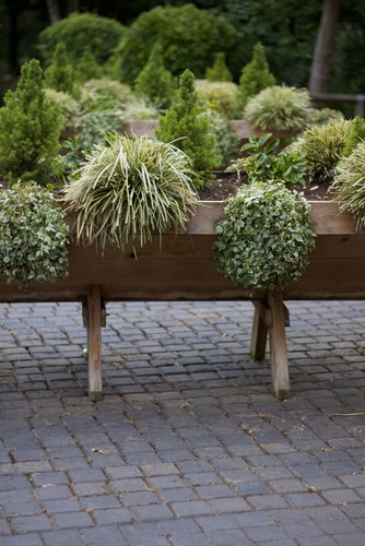 Wooden design planters are beautiful and clean